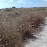 618 m2 Plot in Aradippou, Larnaca
